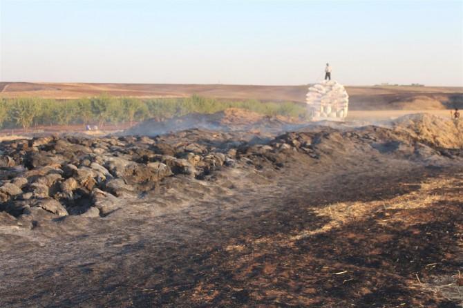 Adıyaman Kahta'daki yangında tonlarca saman küle döndü