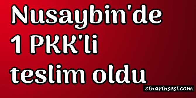 Mardin Nusaybin'de 1 PKK'li teslim oldu