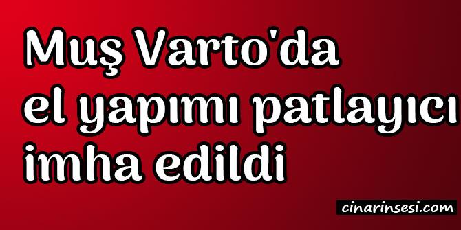 Muş Varto'da el yapımı patlayıcı imha edildi