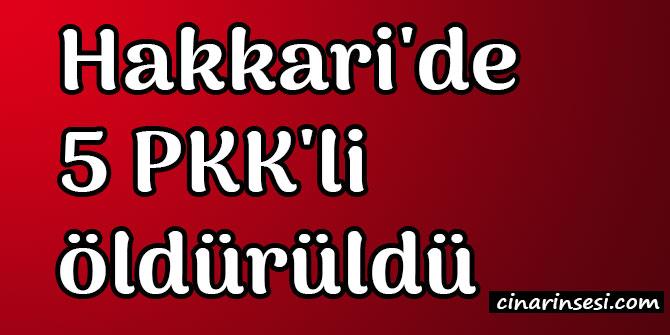 Hakkari Şemdinli'de 5 PKK'li öldürüldü