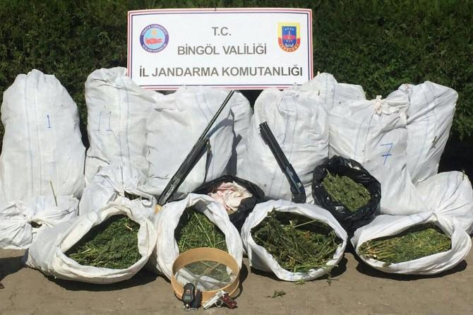 Bingöl Genç'de ahırda 200 kilo esrar ele geçirildi foto