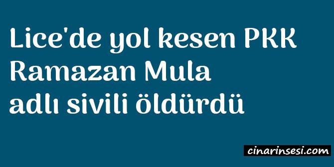 Diyarbakır Lice'de yol kesen PKK'liler Ramazan Mula adlı sivili öldürdü