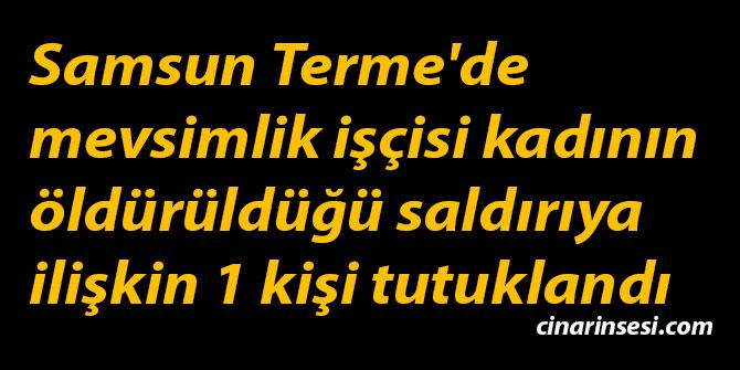 Samsun Terme'de mevsimlik işçisi kadının öldürüldüğü saldırıya ilişkin 1 kişi tutuklandı