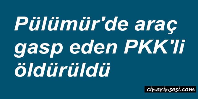Tunceli Pülümür'de araç gasp eden PKK'li öldürüldü