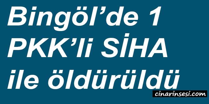 Bingöl'de 1 PKK'li SİHA ile öldürüldü