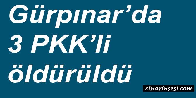 Van Gürpınar'da 3 PKK'li öldürüldü