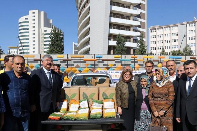 Gaziantep'te bal üreticilerine arı otu dağıtıldı