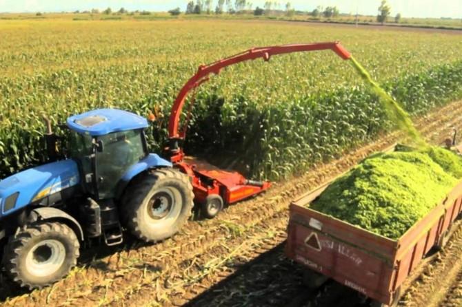 Tarım-ÜFE eylülde arttı