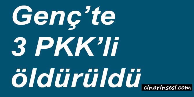 Bingöl Genç'te 3 PKK'li öldürüldü