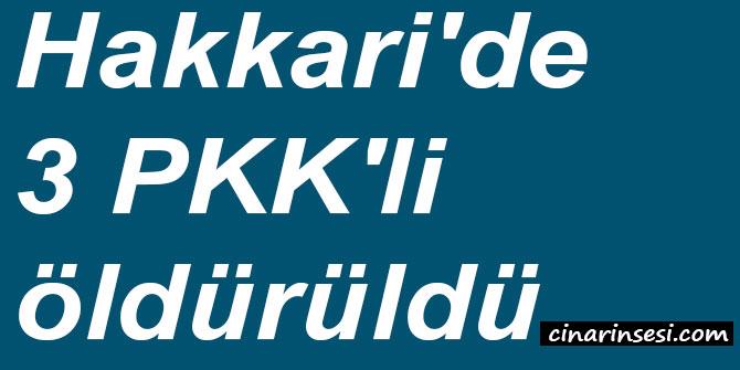 Hakkari'de 3 PKK'li öldürüldü
