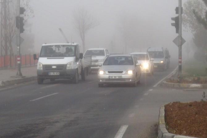 Çınar'da yoğun sis etkili oluyor VİDEO-FOTO