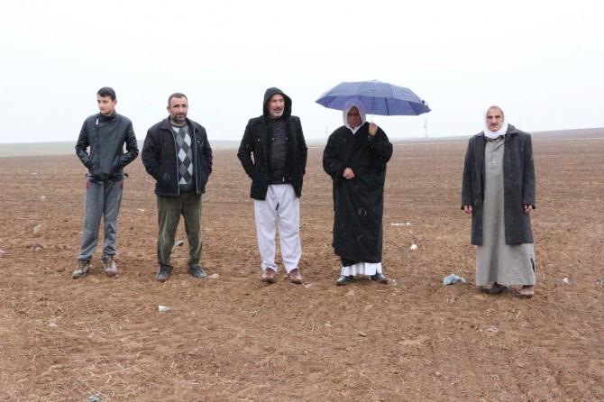 Yağmur Mardin'de çiftçileri sevindirdi