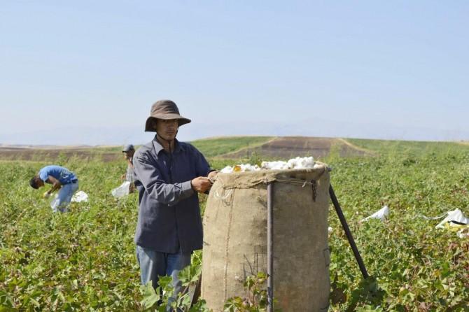 Mevsimlik işçiler de 'İşsizlik Fonu'ndan faydalansın