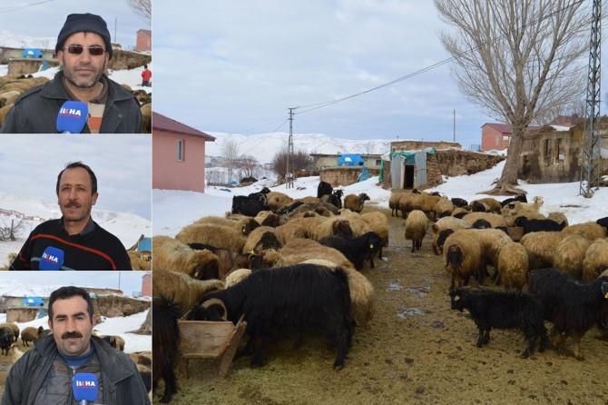 """""""Bölgede hayvancılığın azalmasının sebebi ciddi bir desteğin olamamasıdır"""""""