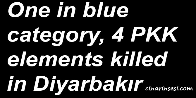 One in blue category, 4 PKK elements killed in Diyarbakır