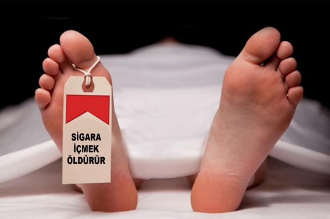 Her yıl 7 milyon kişi sigaradan ölüyor