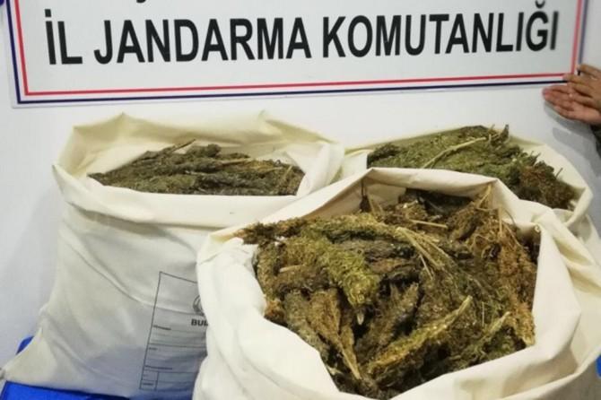 Uyuşturucu operasyonunda 35 kilo esrar ele geçirildi