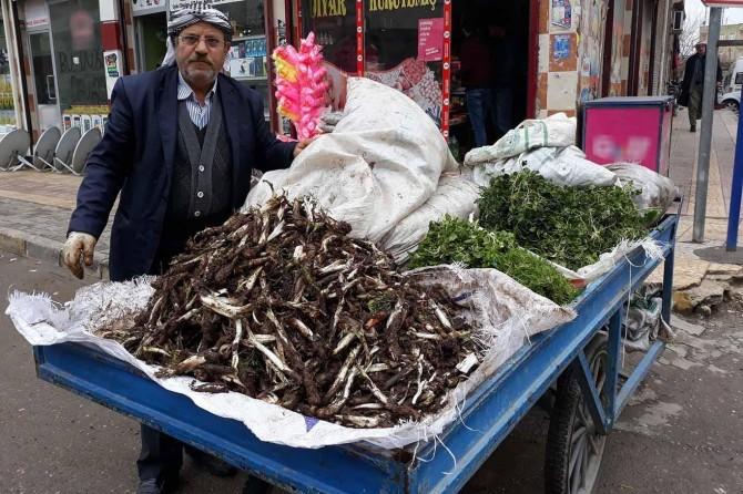Kerengan cîyê xwe yên li bazaran girt