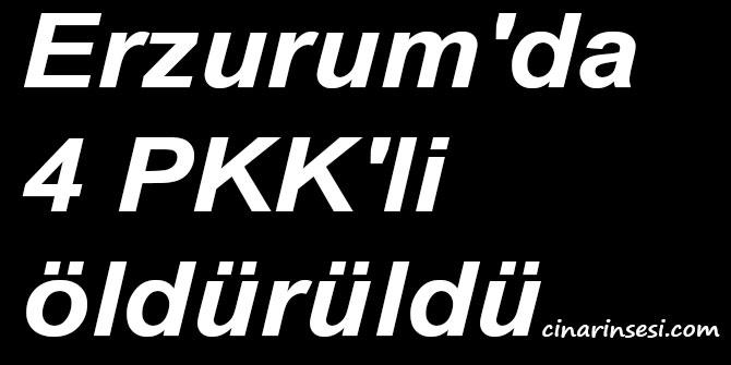 Erzurum'da 4 PKK'li öldürüldü
