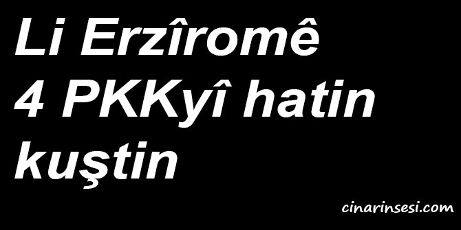 Li Erzîromê 4 PKKyî hatin kuştin