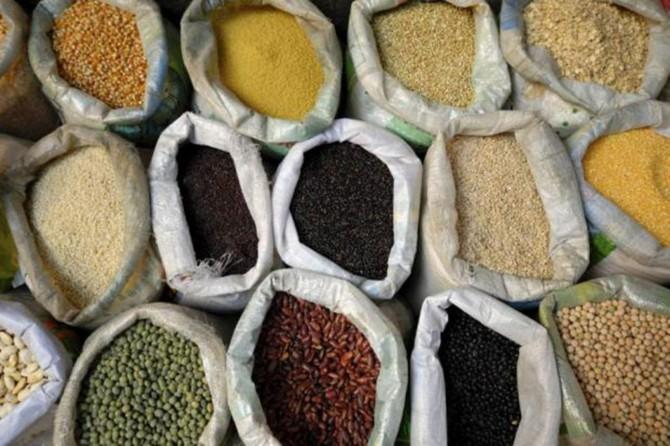 Bitkisel ürün fiyatları arttı