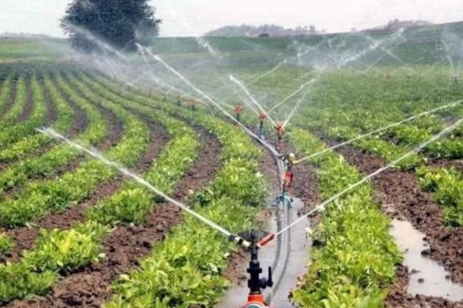 Diyarbakır'daki çiftçilere 328 milyon 500 bin TL destekleme yapıldı