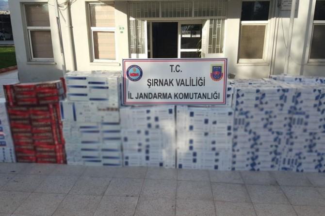 Şırnak'ta 27 bin 110 paket kaçak sigara ele geçirildi