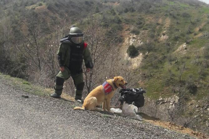 Bingöl Genç'te yol kenarına tuzaklanmış patlayıcı bulundu