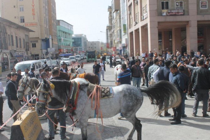 At arabacılardan büyükşehir belediyesine tepki