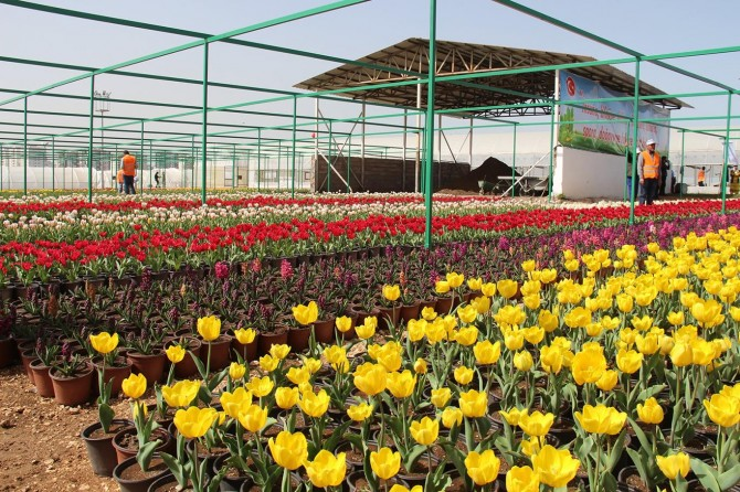 Diyarbakır'da '2 Milyon Çiçek 500 Fidan Projesi'nin açılış töreni yapıldı