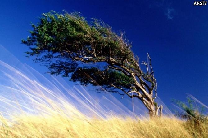 Kuvvetli rüzgâra dikkat
