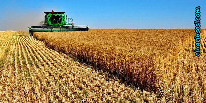 Çiftçiye 2 milyarlık ödeme başladı