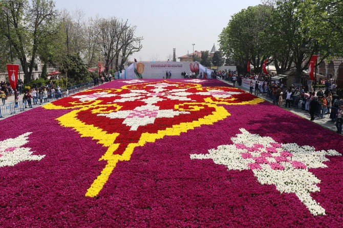 The world's largest live tulip carpet in Istanbul
