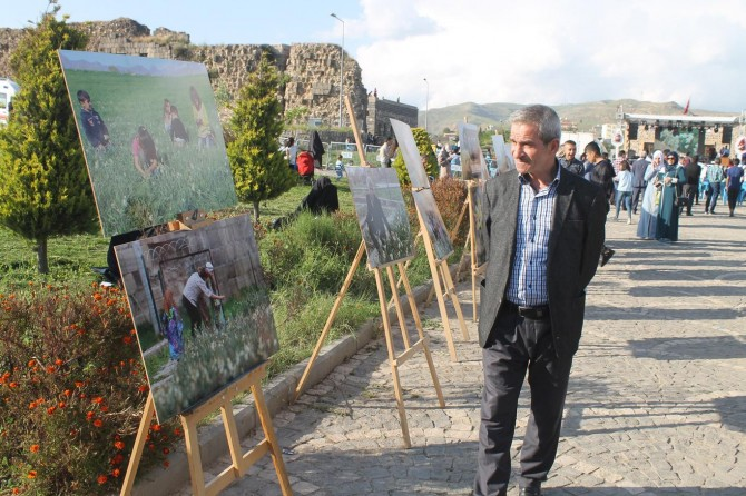 "Cizre'de ""Nergis Festivali"" düzenlendi"