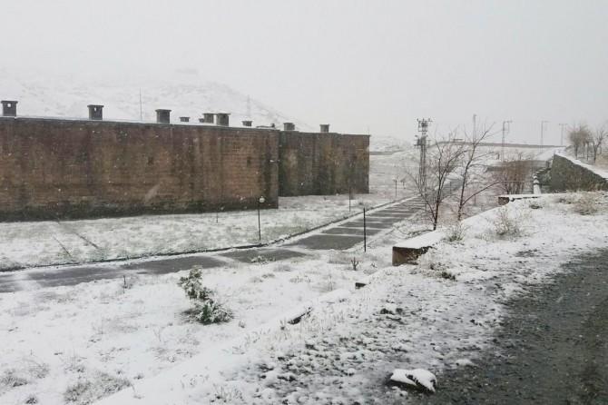 Bitlis'te nisanın son haftasında kar sürprizi