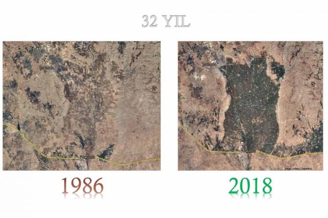 Harran Ovası'nda sulamanın toprak karbon dinamiğine etkisi araştırıldı