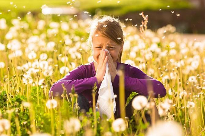 """""""Bahar aylarında ev içerisindeki bitkiler dışarı çıkarılmalı"""""""