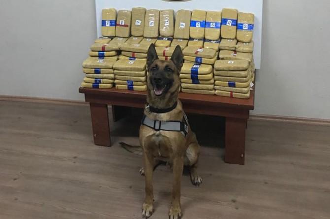 Bitlis'te 73 kilogram eroin ele geçirildi