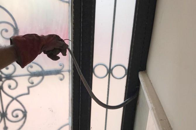 Lojman kapısına sıkışan yılan paniğe neden oldu