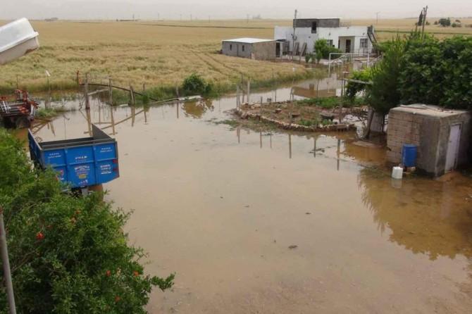 Mardin Nusaybin'de su borusu patladı yüzlerce kümes hayvanı telef oldu