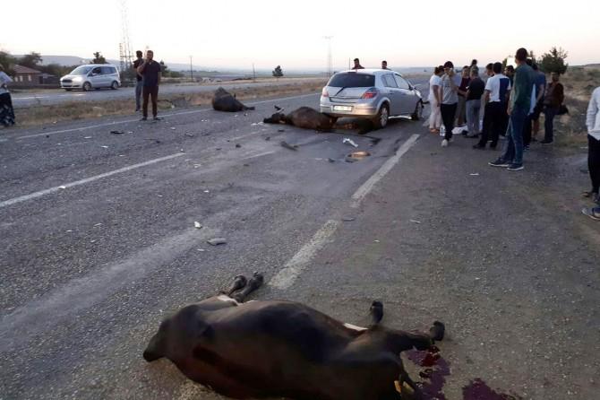 Bismil-Diyarbakır Karayolunda otomobil sürüye daldı