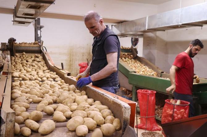 """Rekabet Kurumundan """"patates ve soğan"""" açıklaması"""
