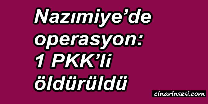 Tunceli Nazımiye'de operasyon: 1 PKK'li öldürüldü