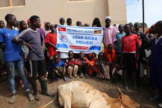 Ugandalı Müslümanlara kırmızı et yardımı
