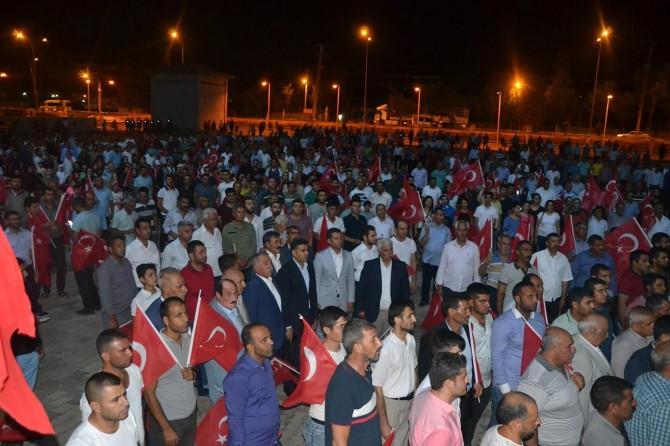 Şanlıurfa Viranşehir'de 15 Temmuz yürüyüşü yapıldı