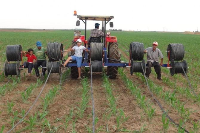 Mardin'de çiftçiler damlama sulama sistemine geçiyor