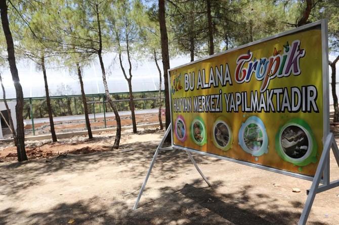 Gaziantep'te tropik kelebek merkezi kuruluyor