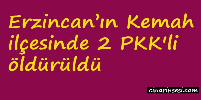 Erzincan Kemah'da 2 PKK'li öldürüldü