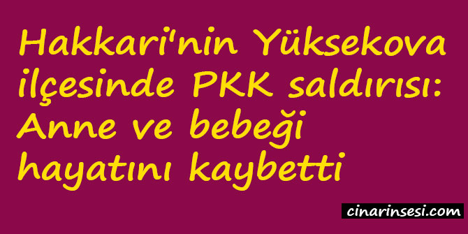 Hakkari Yüksekova'da PKK saldırısı: Anne ve bebeği hayatını kaybetti