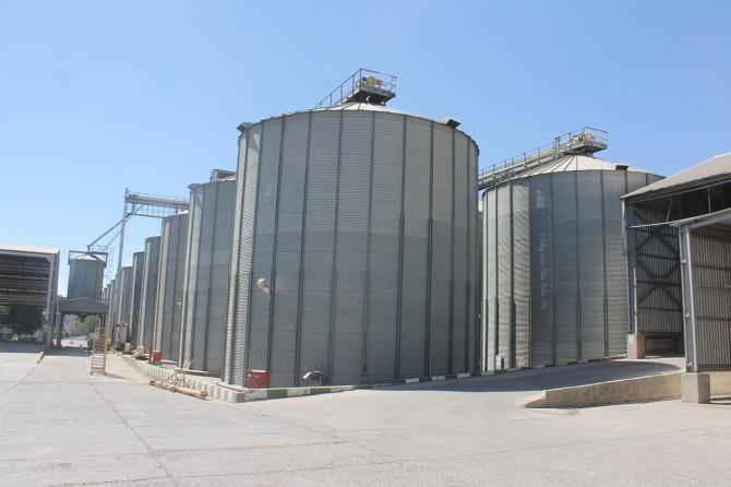 Diyarbakır Bismil'de TMO'dan 22 ton buğday çalmışlar